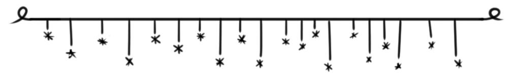 gwiazdki choinkowe